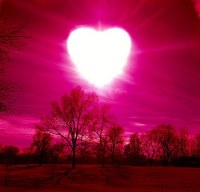 veggenza amore